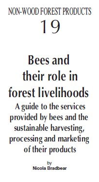 bees_and_their_role_in_forest_livelihoods.jpg