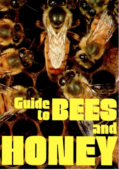 guide_to_bees_honey.jpg